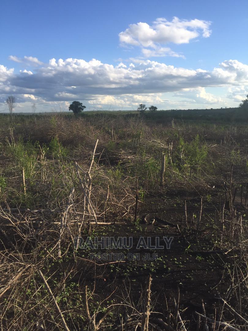 Shamba Linauzwa Bago   Land & Plots For Sale for sale in Bago, Bagamoyo, Tanzania