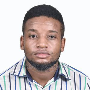 Sales and Marketing   Advertising & Marketing CVs for sale in Dar es Salaam, Temeke