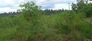 Eneo Linauzwa   Land & Plots For Sale for sale in Dar es Salaam, Kinondoni