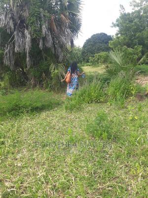 Kigamboni Buyuni Beach Plot Sqm 1 at 4500 | Land & Plots for Rent for sale in Ilala, Kivukoni