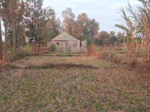 Eneo Linauzwa   Land & Plots For Sale for sale in Mwanza Region, Nyamagana