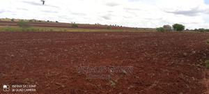 Agricultural Land for Seasonal RENT | Farm Machinery & Equipment for sale in Manyara Region, Simanjiro
