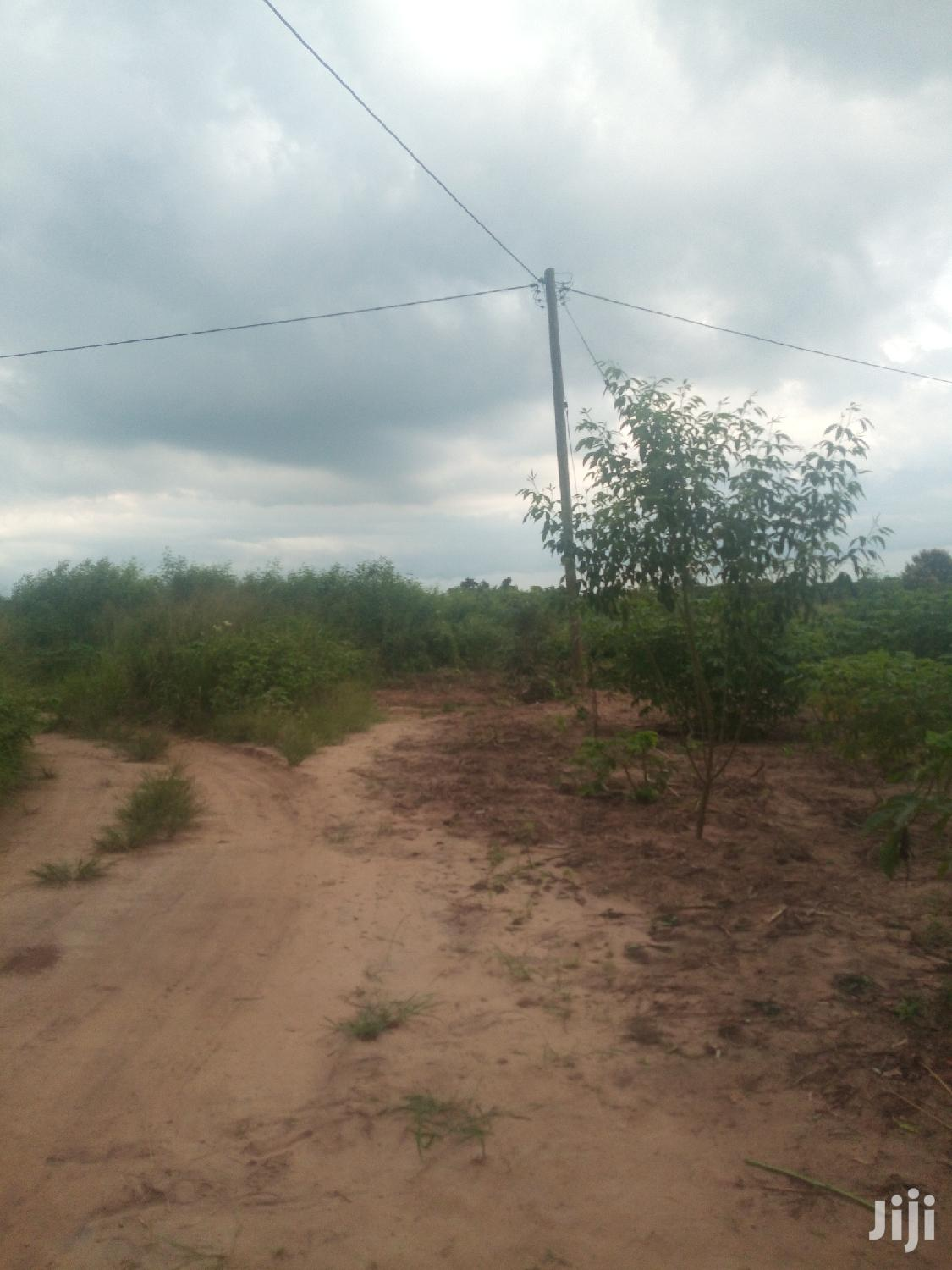 Mixed-Land For Sale