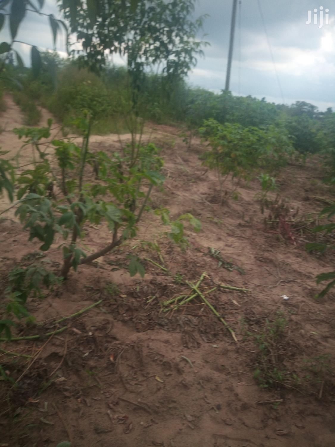 Mixed-Land For Sale | Land & Plots For Sale for sale in Kinondoni, Dar es Salaam, Tanzania