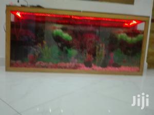 Aquariums And Pet Fish