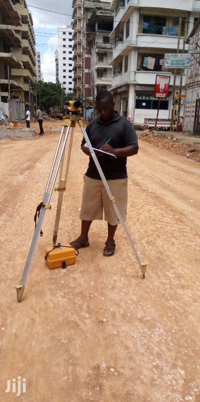 Highway Surveyor   Engineering & Architecture CVs for sale in Ilala, Dar es Salaam, Tanzania