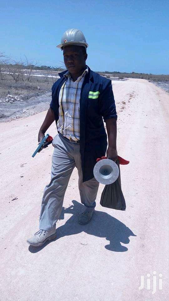 Highway Surveyor