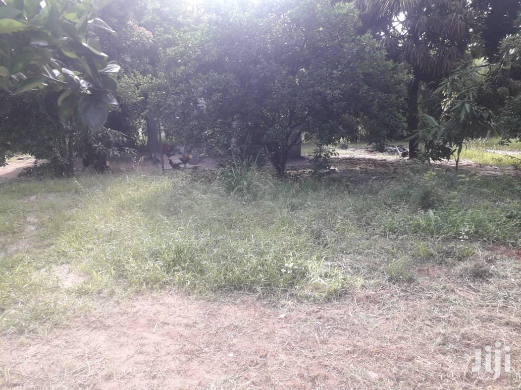 Archive: Wonderful Big Plot For Sale Mbezi Beach Sqm 2882.