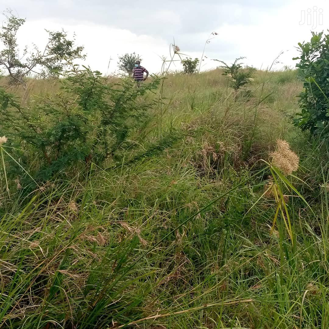 Archive: Residential Land For Sale