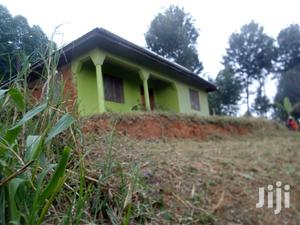 House For Sale In Lushoto