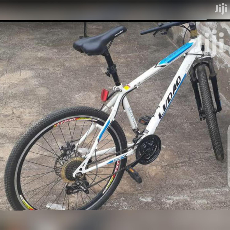 LVDAO Mount Bike