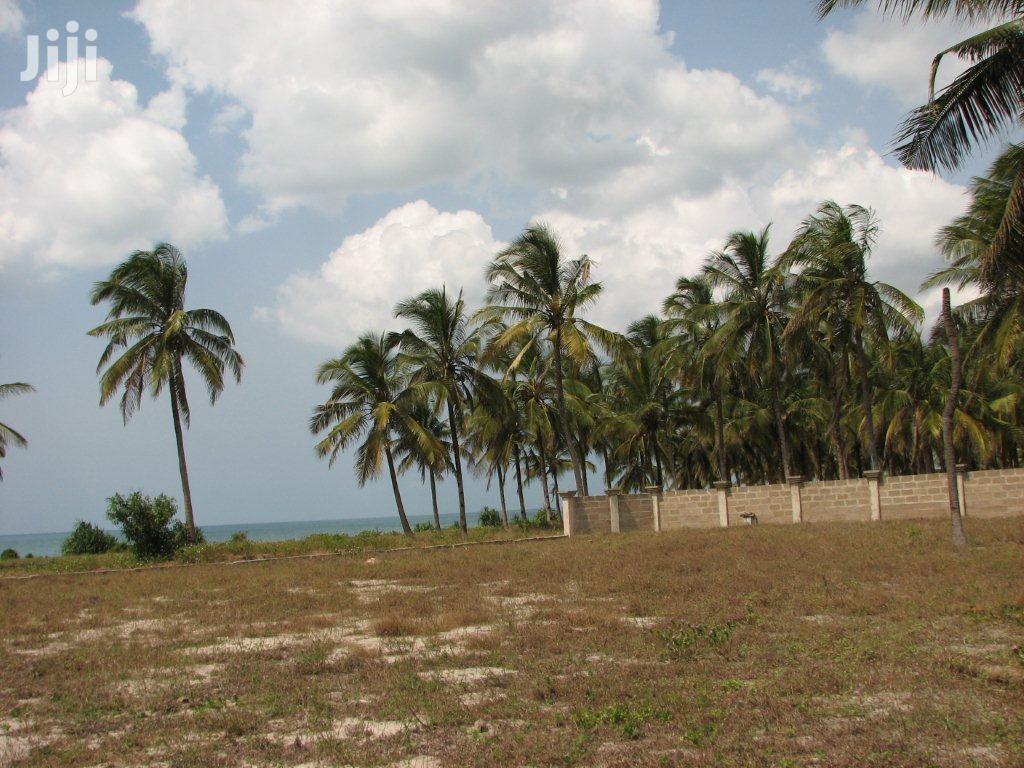 11 Acres Of Beach Plot For Sale