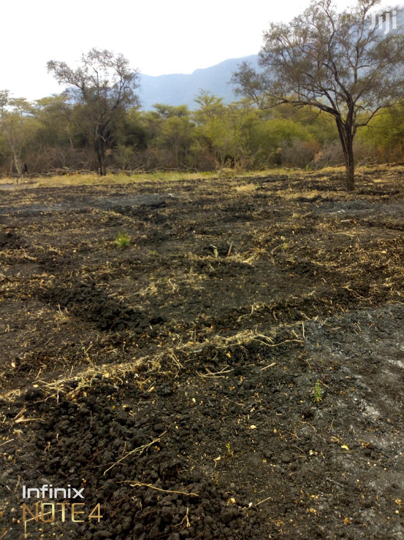 Arusha Fertile Lands For Lease