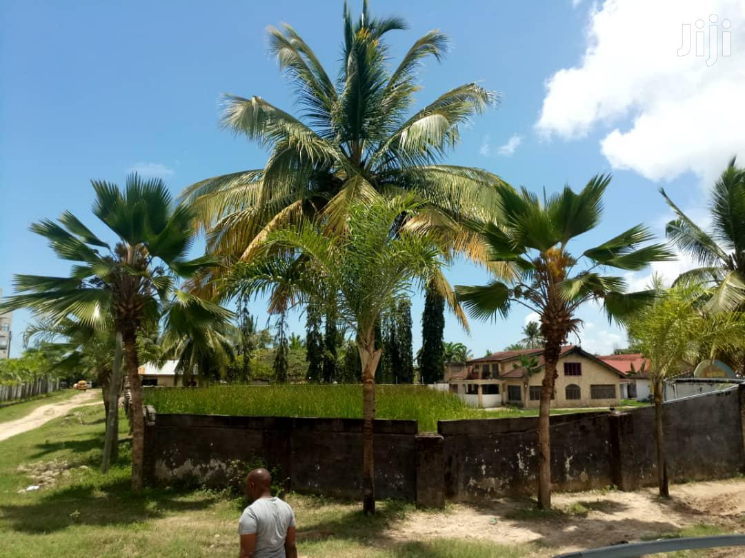 Big Plot for Sale Mbezi Beach