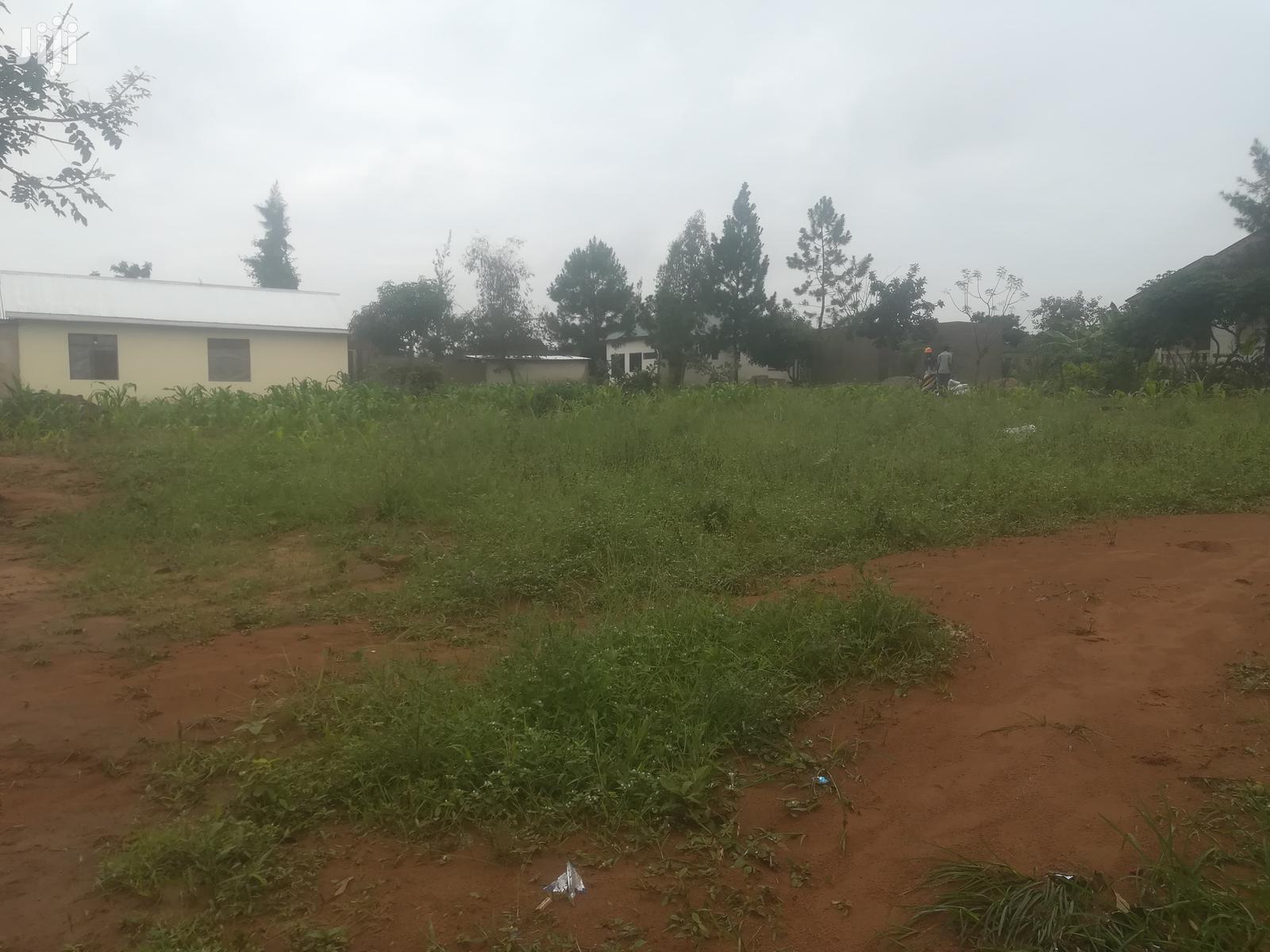 Archive: Kiwanja Kinauzwa Kisesa Mwanza