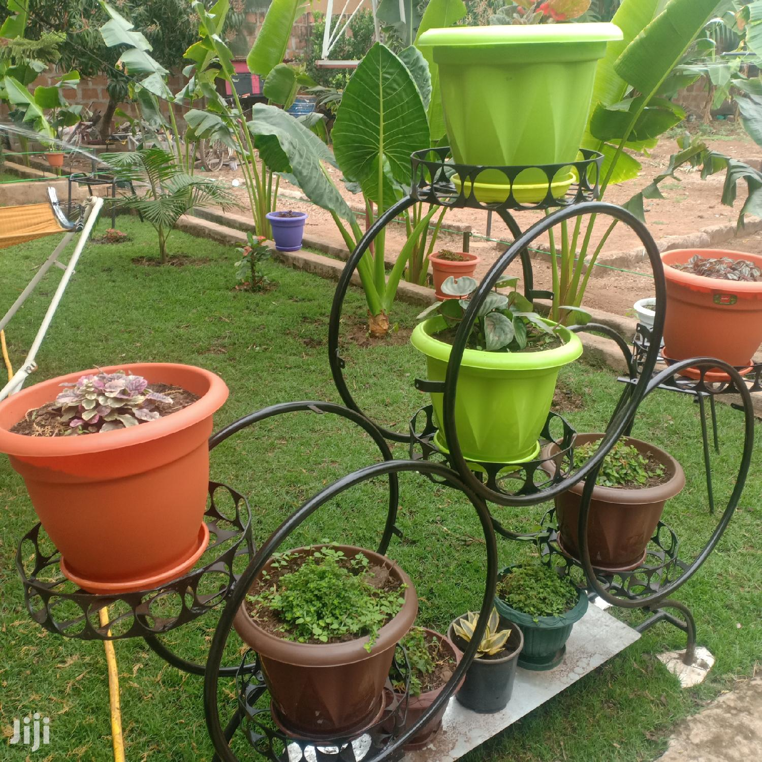 Flowers And Garden Flower Stands | Garden for sale in Moshi Rural, Kilimanjaro Region, Tanzania