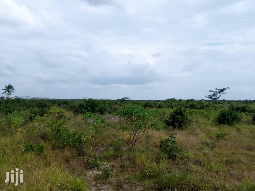 Mashamba Makubwa Ya Kilimo Na Ufugaji Yanauzwa. | Commercial Property For Sale for sale in Kinondoni, Dar es Salaam, Tanzania