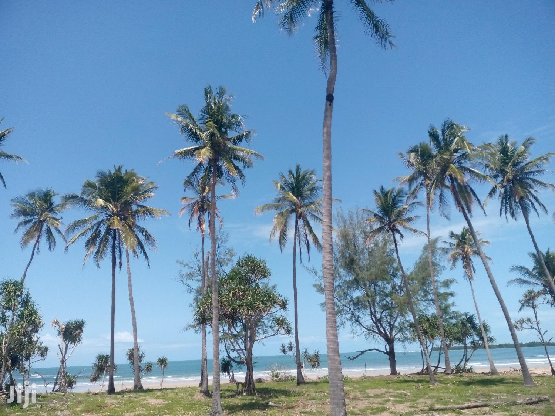 Viwanja Vya Beach Vinauzwa Kigamboni