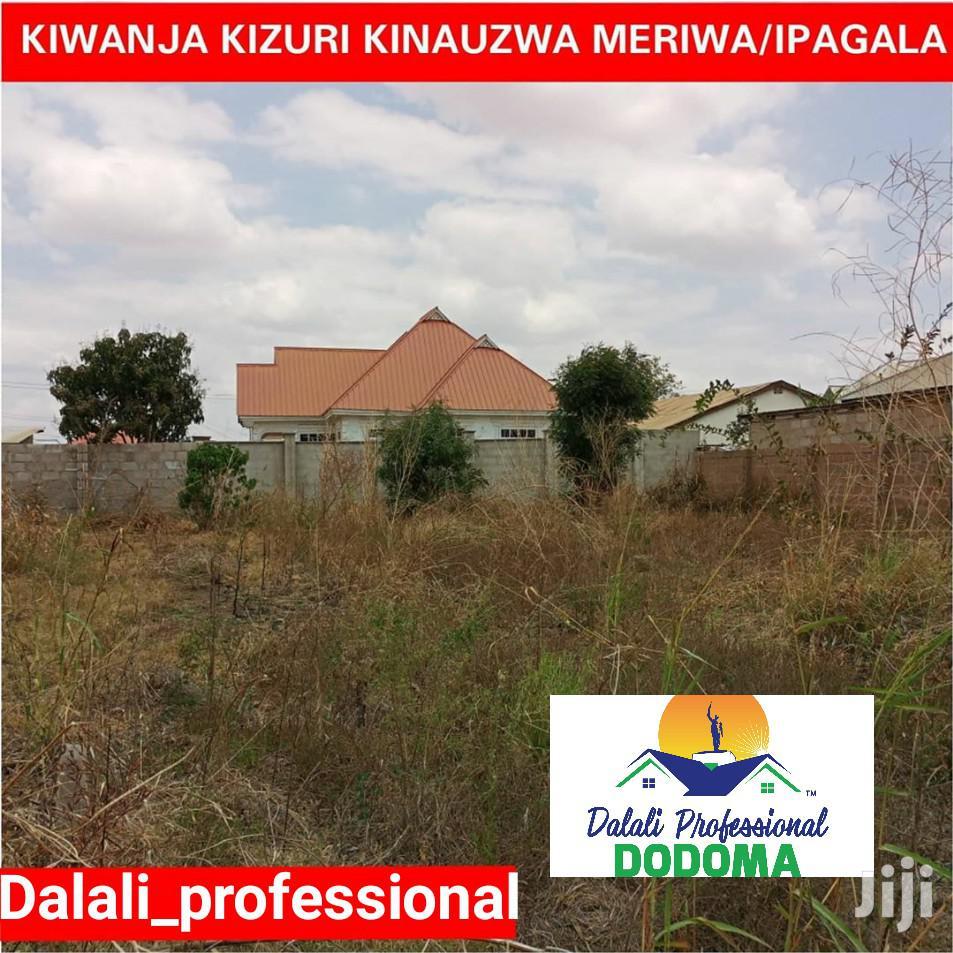Kiwanja Kinauzwa Ipagala   Land & Plots For Sale for sale in Dodoma Rural, Dodoma Region, Tanzania