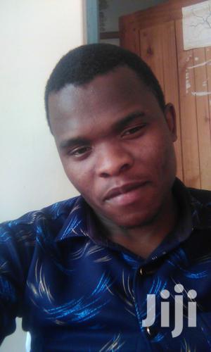 Diploma in Clinical Medicine | Healthcare & Nursing CVs for sale in Njombe Region, Njombe Urban