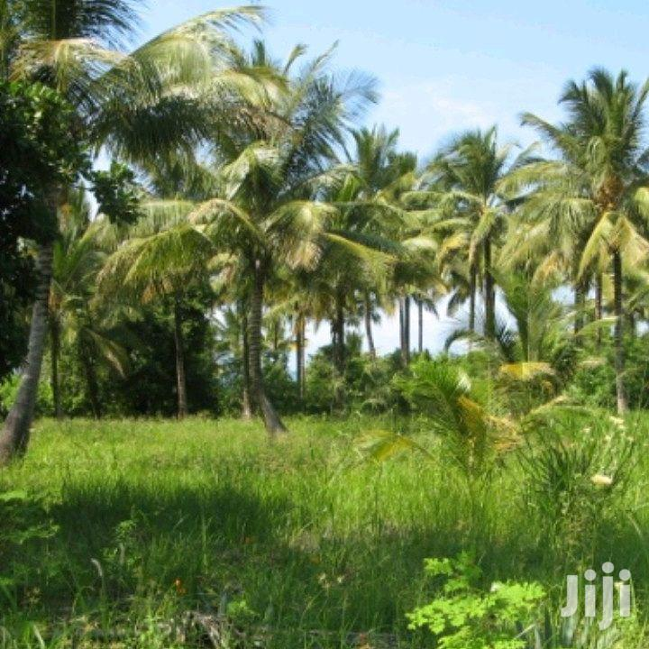 Beach Plot For Sale | Land & Plots For Sale for sale in Pangani A (West), Pangani, Tanzania