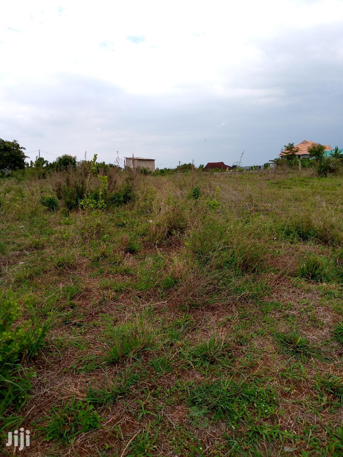 Archive: Bunju Plot for Sale