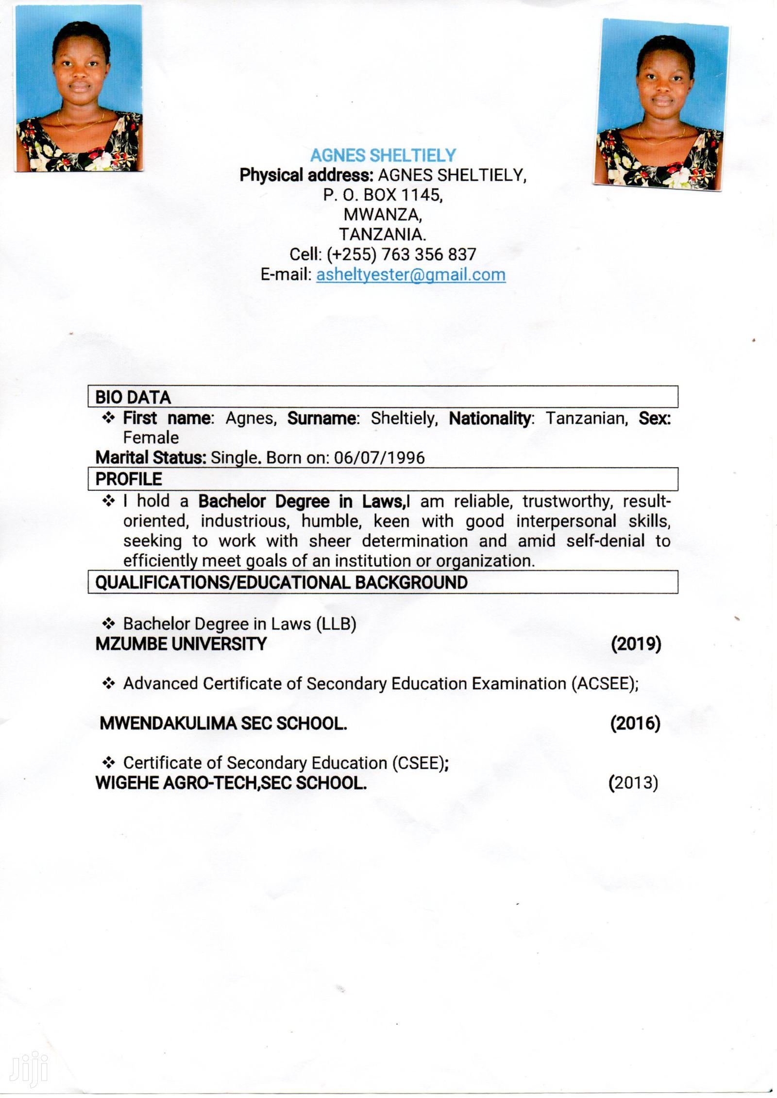 Childcare & Babysitting CV