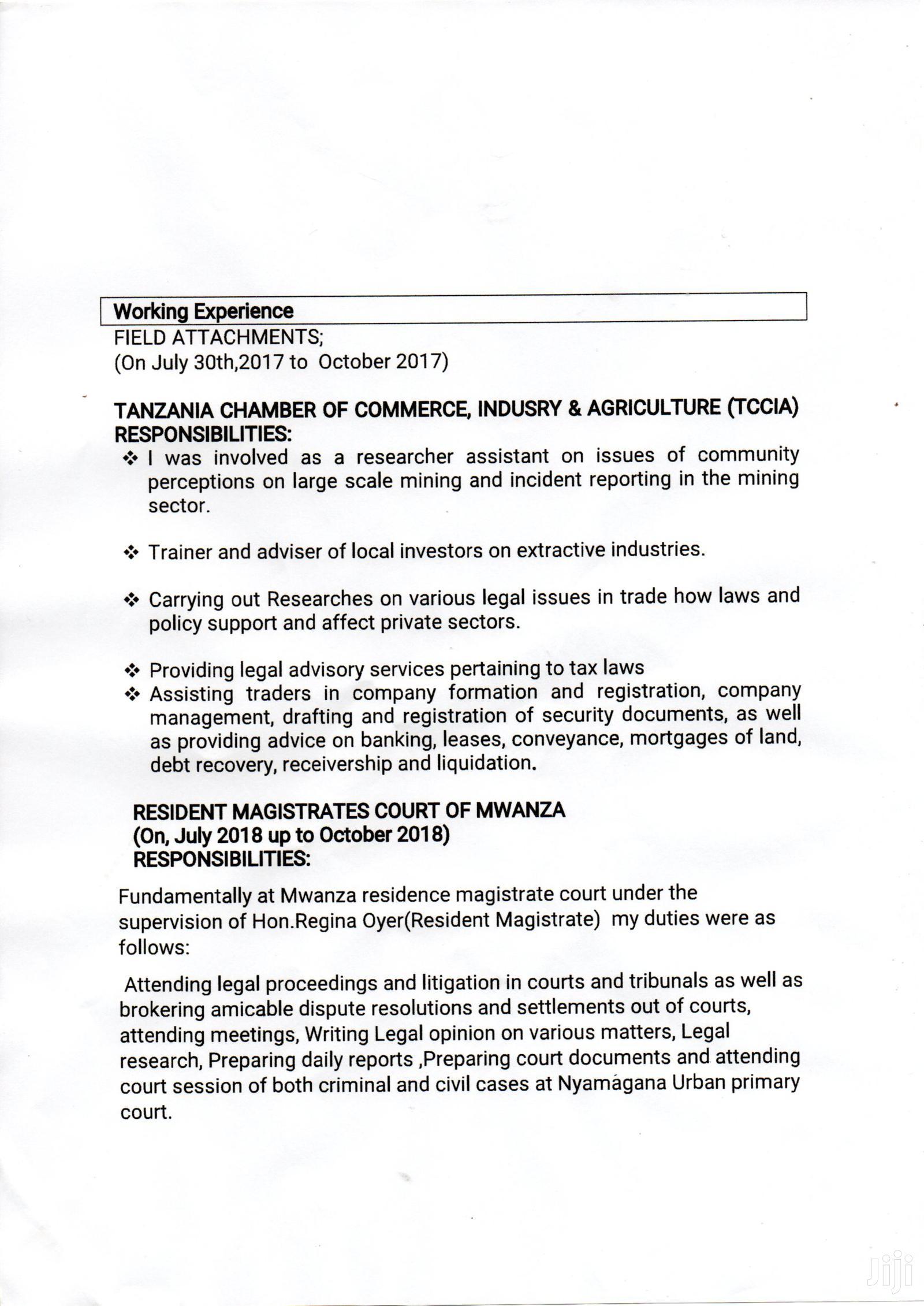 Childcare & Babysitting CV | Childcare & Babysitting CVs for sale in Nyamagana, Mwanza Region, Tanzania