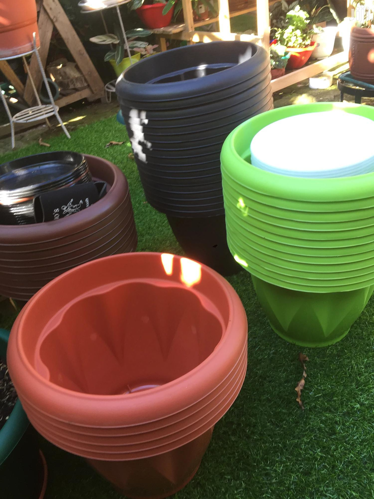 Archive: Lower Pots