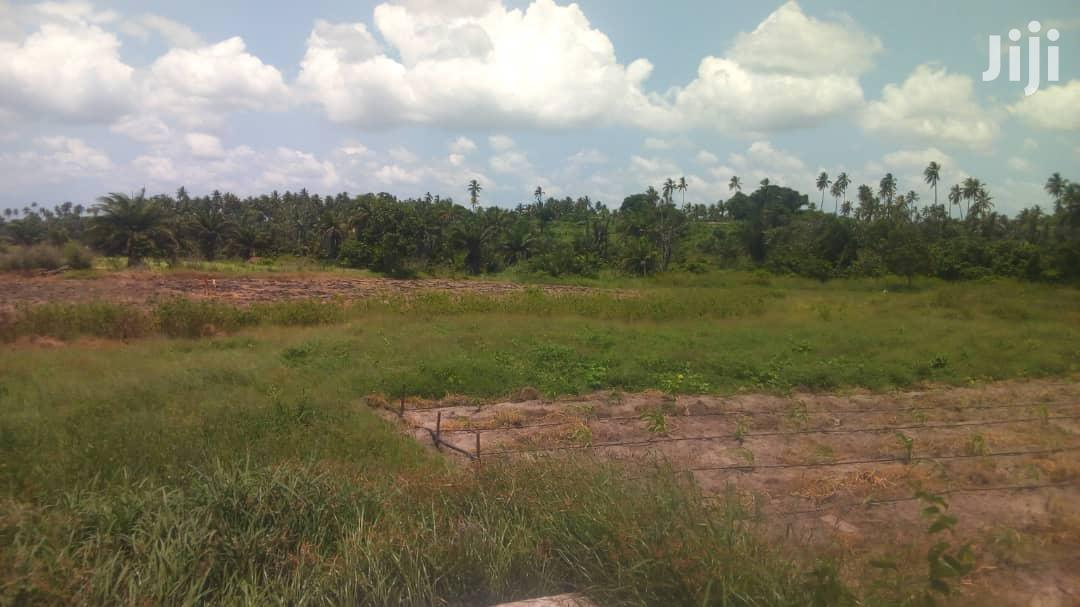 Good Land Is for Sale | Land & Plots For Sale for sale in Mkuranga, Pwani Region, Tanzania