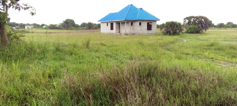 Archive: Kiwanja Kinauzwa Kigamboni