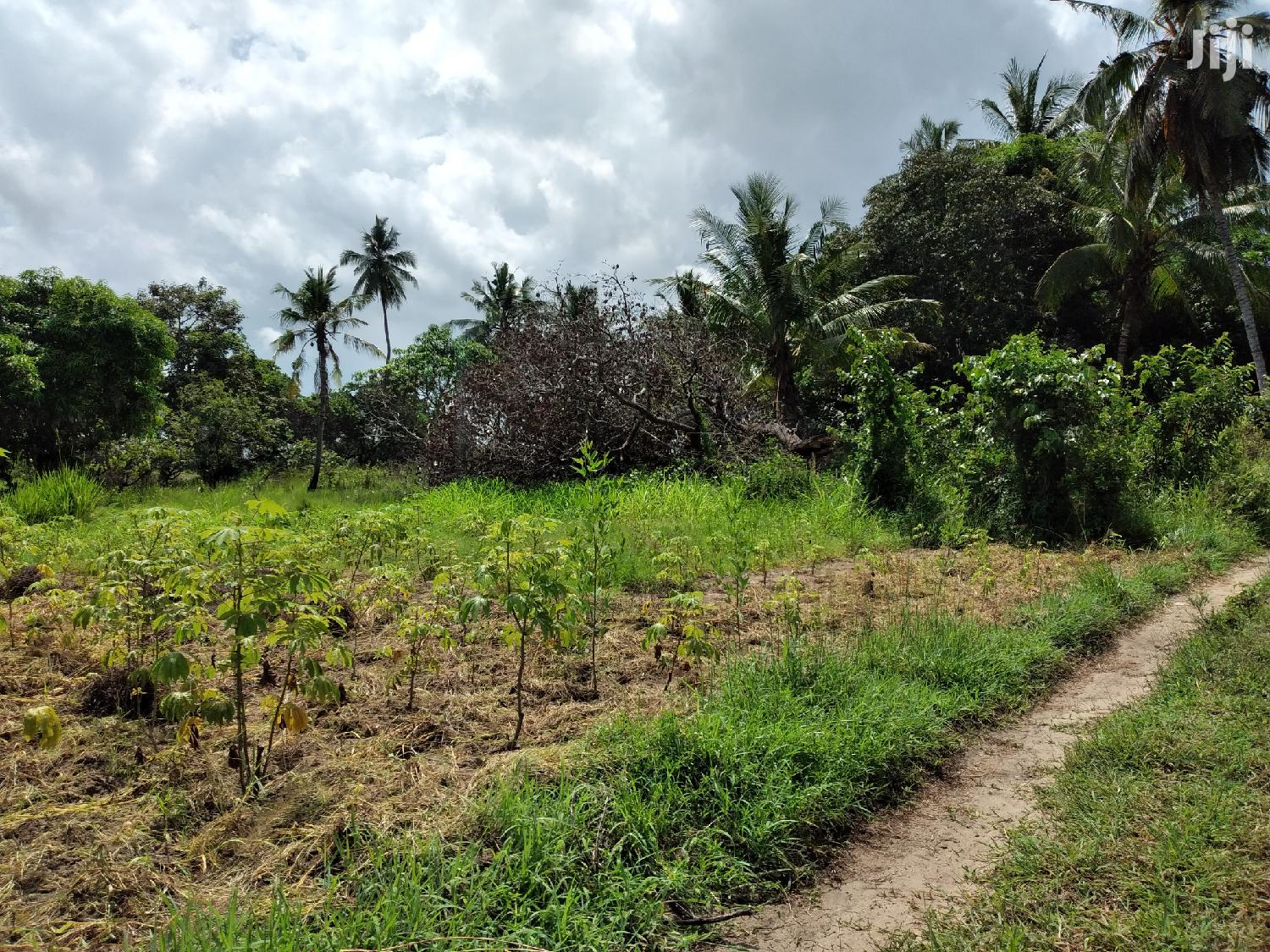 Land Plot For Sale At Bagamoyo