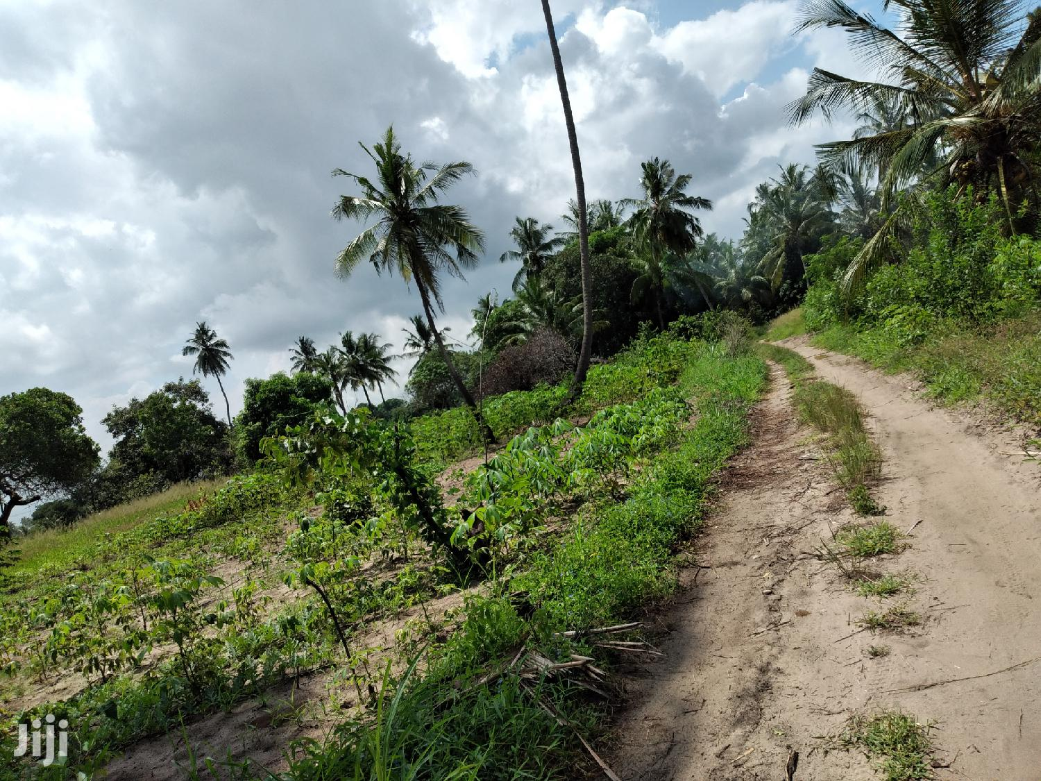 Land Plot For Sale At Bagamoyo | Land & Plots For Sale for sale in Kiromo, Bagamoyo, Tanzania