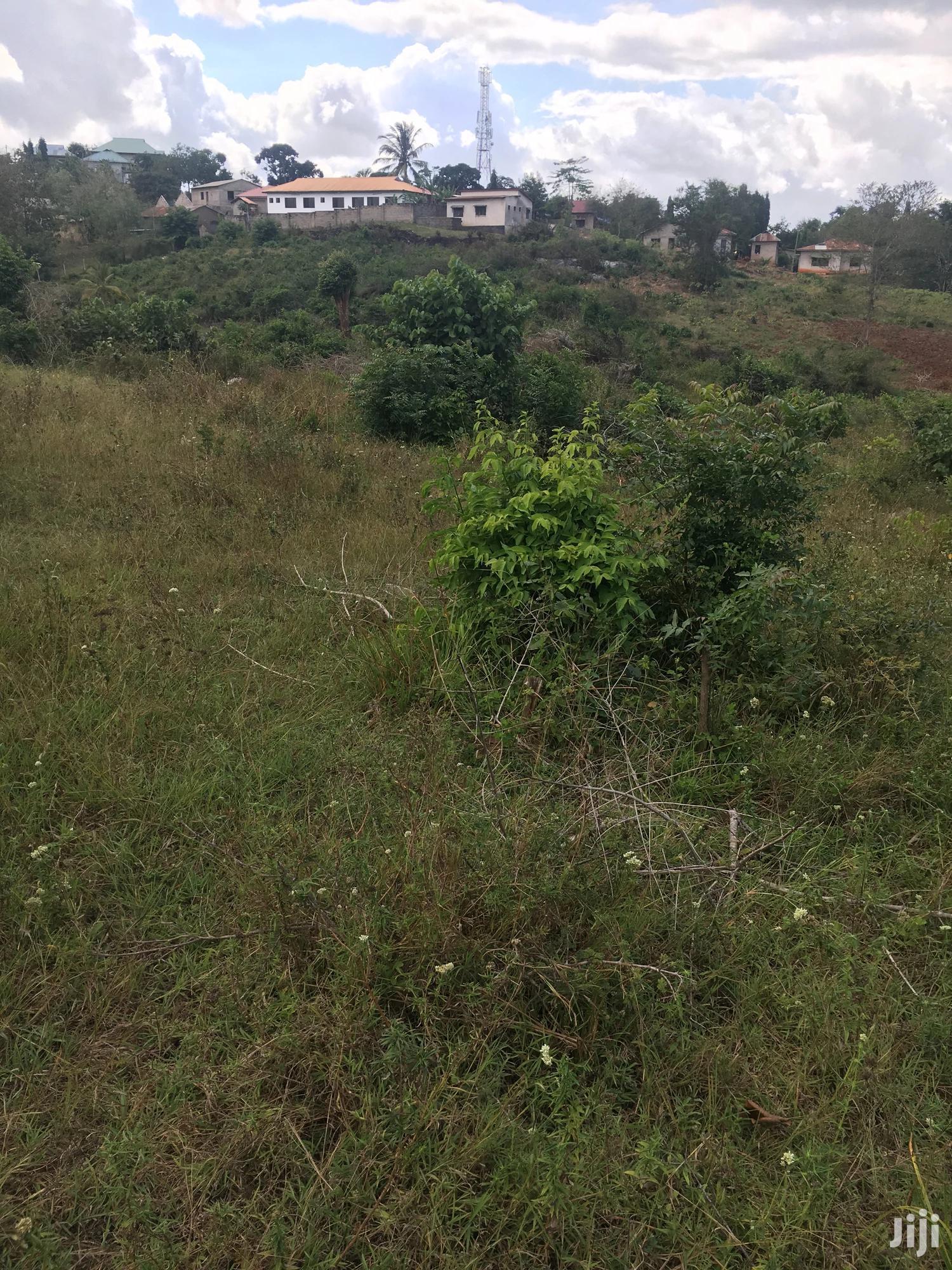 Archive: Viwanja Madale Mivumoni (Nyuma Ya Shule Ya Atlas- Mil. 16)