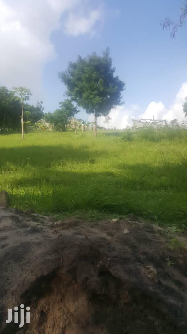 Archive: Viwanja Misugusugu Kibaha (Kutoka Morogoro Road- Mita 300)