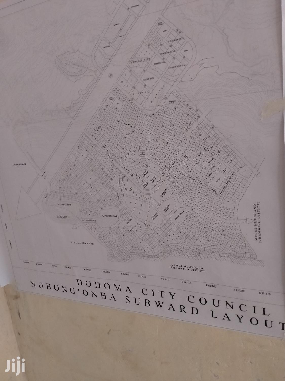Archive: Dodoma Viwanja