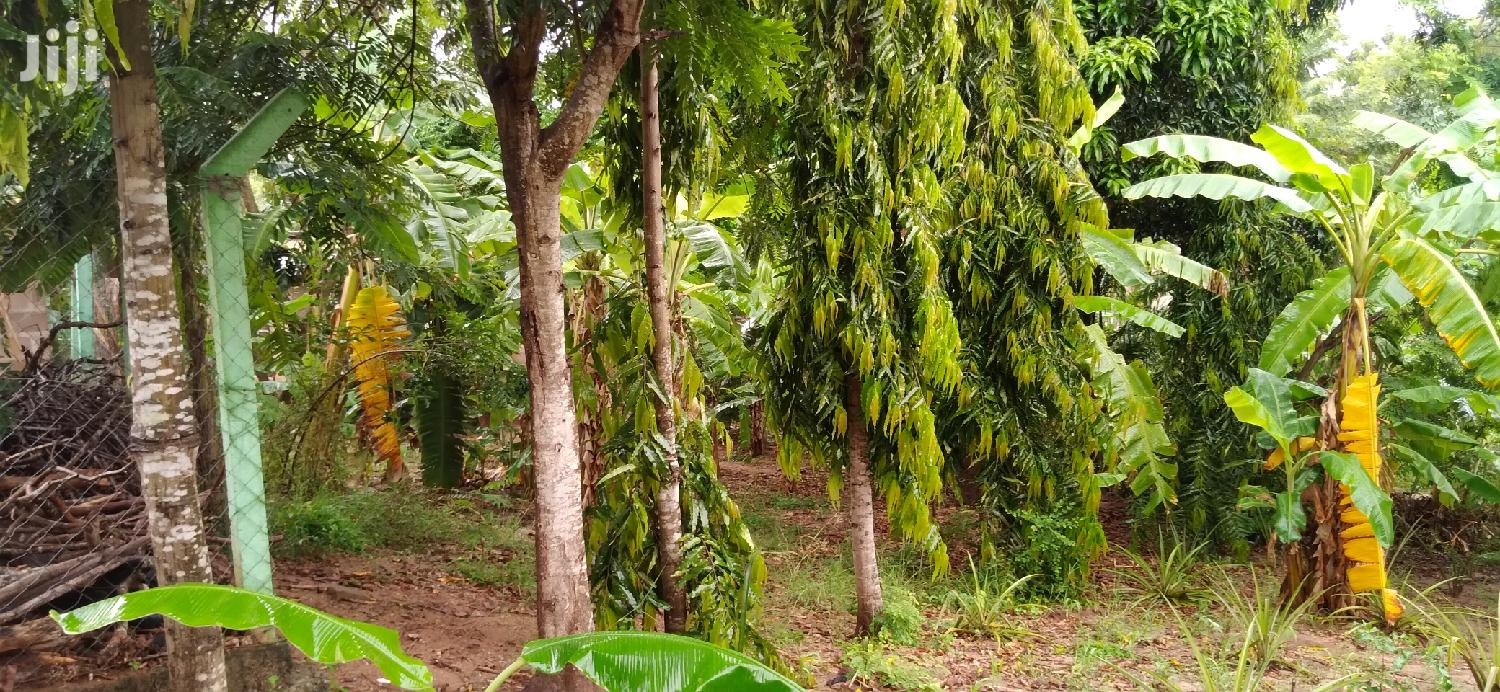 Archive: Shamba 30/60 For Sale