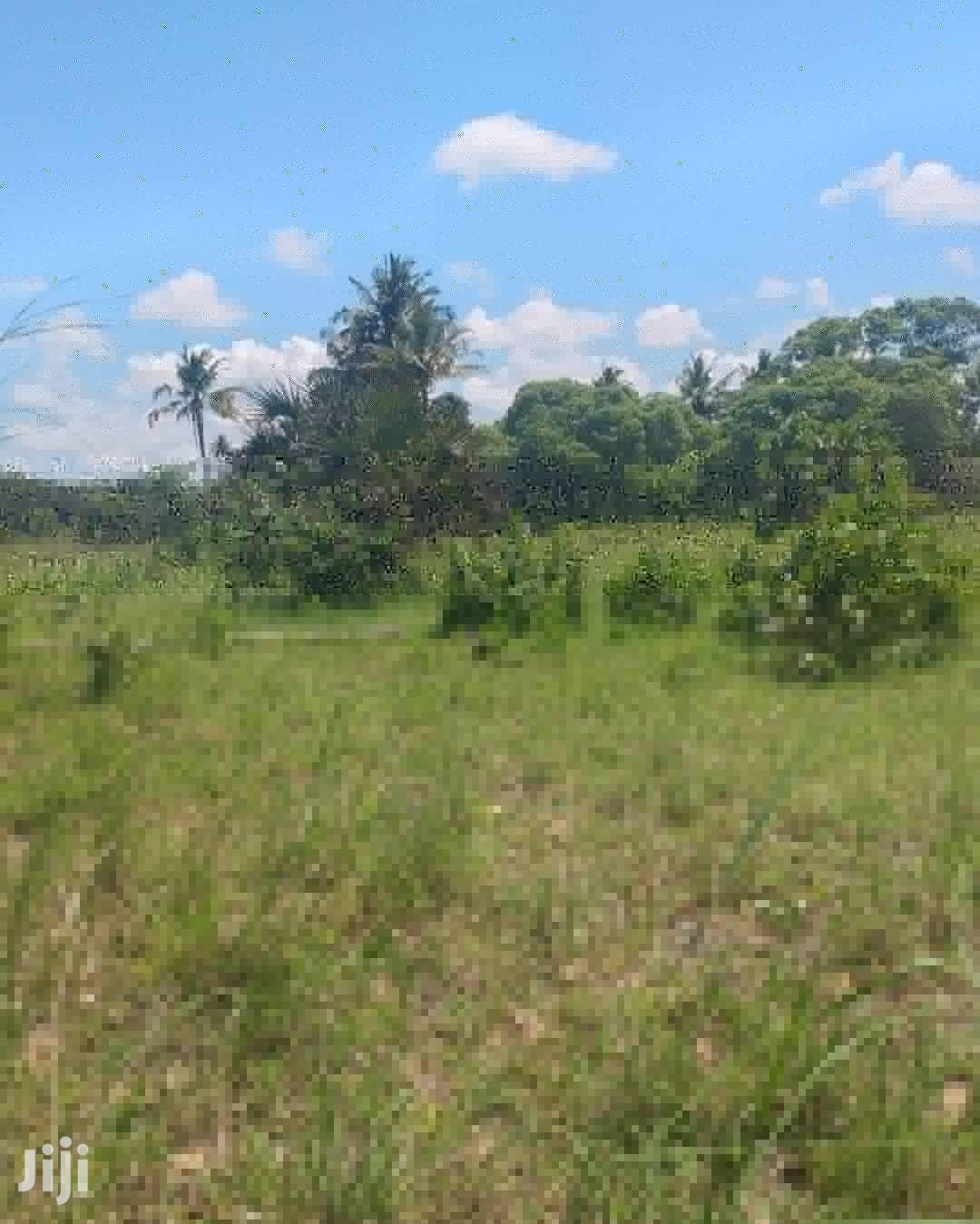 Plot For Rent At Bagamoyo Kiromo