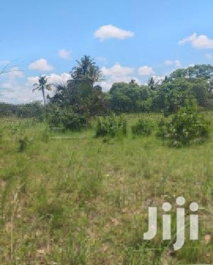 Plot For Rent At Bagamoyo Kiromo | Land & Plots for Rent for sale in Bagamoyo, Kiromo