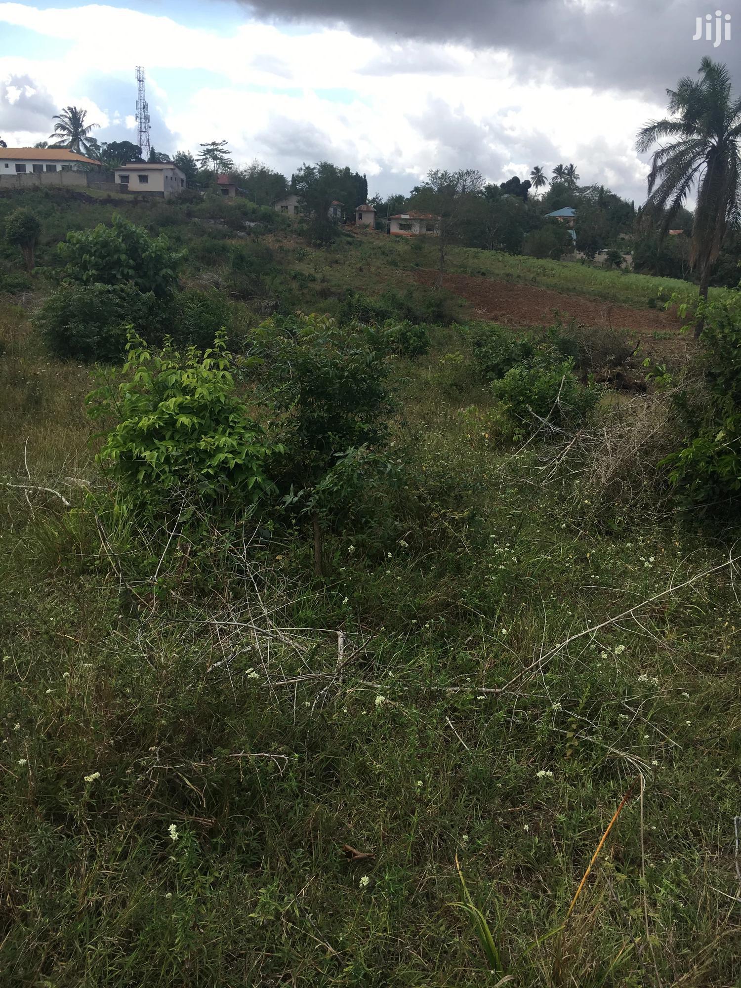 Archive: Viwanja Iyumbu Dodoma (Njia Ya Kuelekea UDOM)