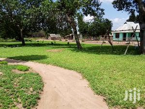 Eneo Zuri Linauzwa   Land & Plots For Sale for sale in Mkuranga, Kimanzichana
