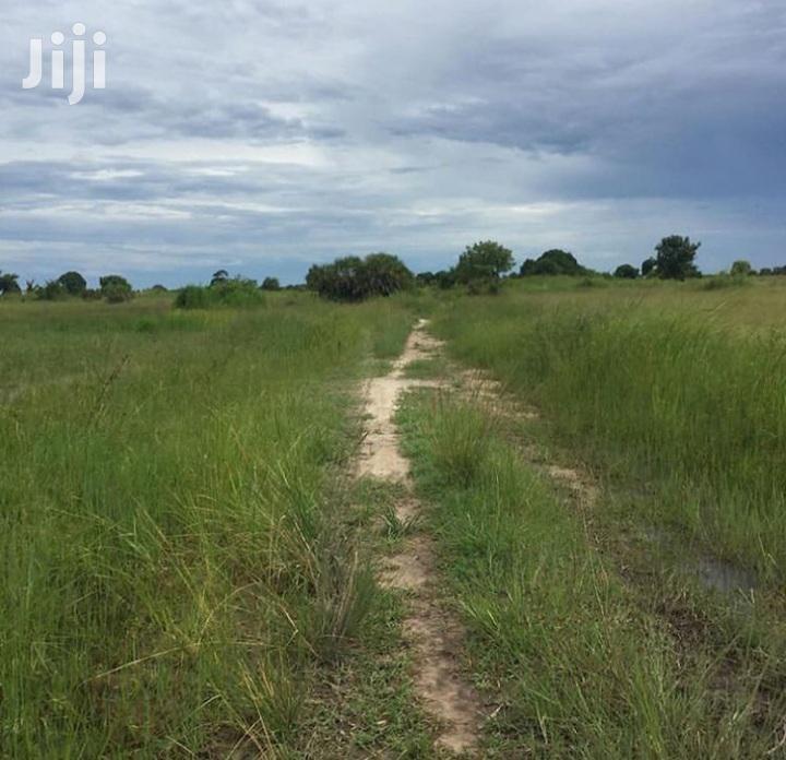 Viwanja Vinauzwa Kimbiji Kigamboni | Land & Plots For Sale for sale in Kimbiji, Temeke, Tanzania