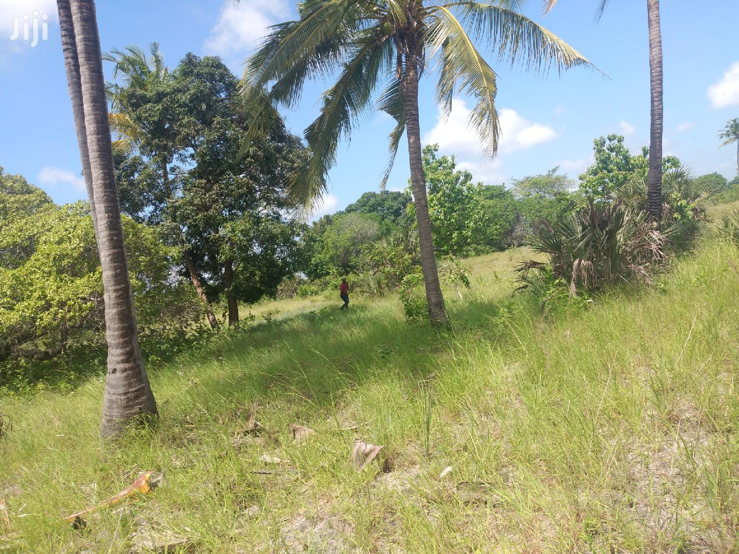 Land Plot For Sale At Bagamoyo Kiromo