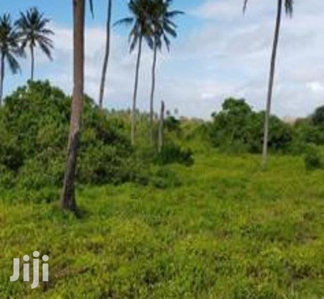 Kinauzwa - Kigamboni