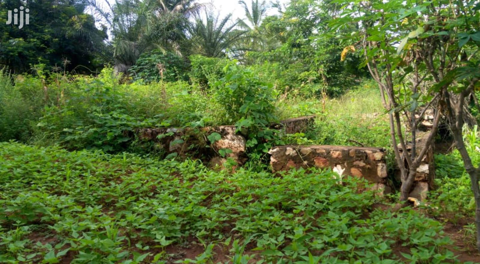 Shamba Kimbiji | Land & Plots For Sale for sale in Temeke, Dar es Salaam, Tanzania