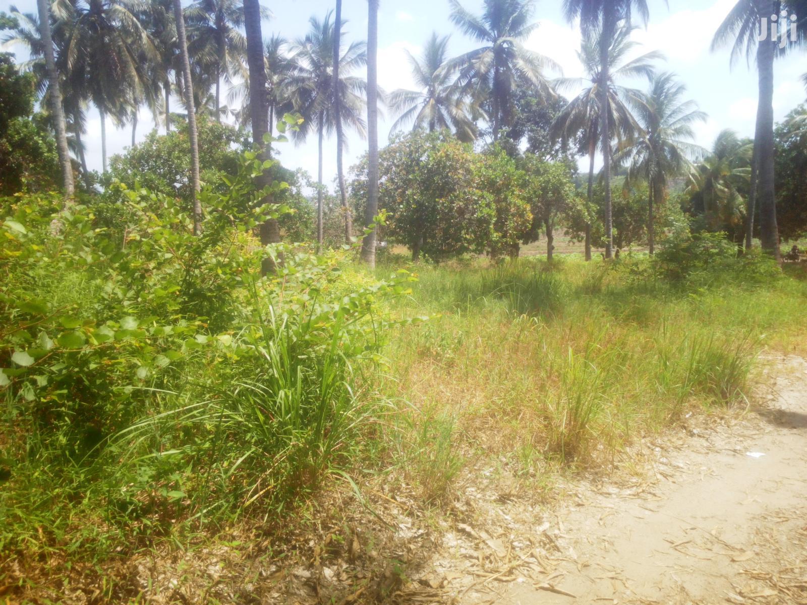 10 Acres Farm for Sale | Land & Plots For Sale for sale in Chamazi, Temeke, Tanzania