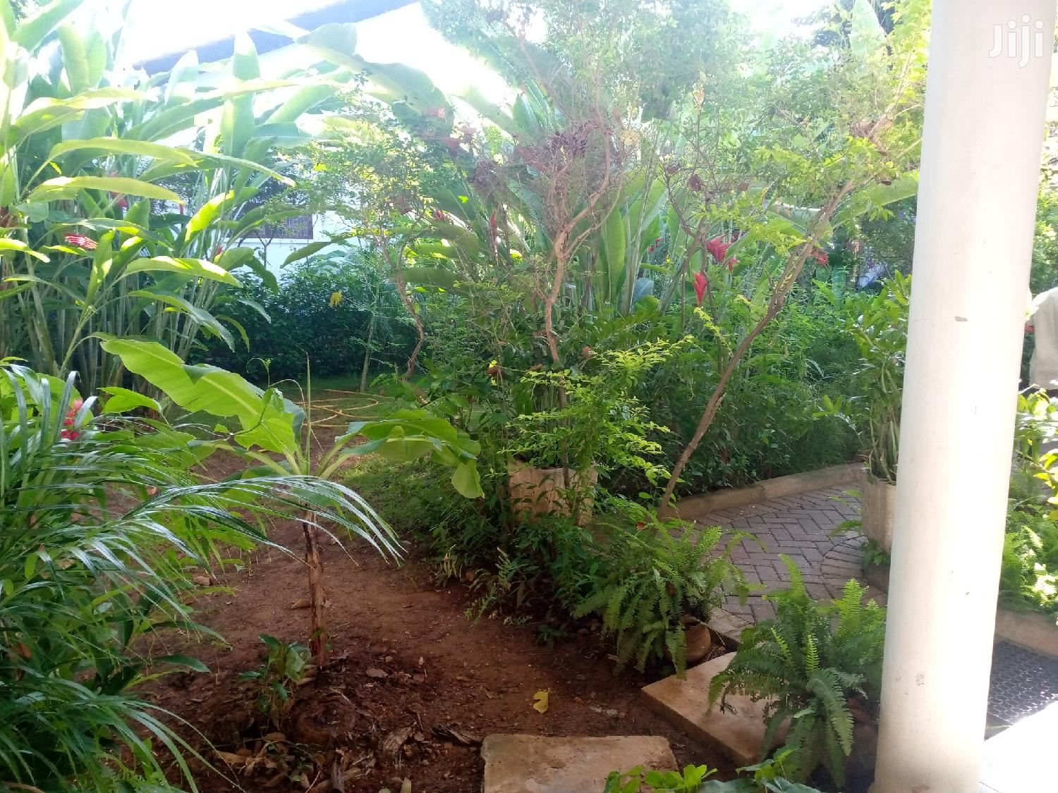 2/1bedroom at Masaki   Houses & Apartments For Rent for sale in Kinondoni, Dar es Salaam, Tanzania