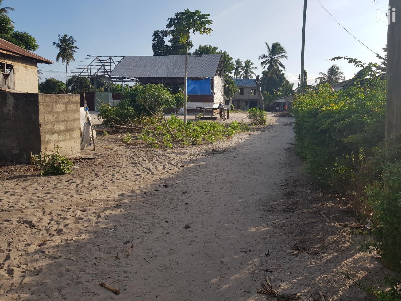 Archive: Big Plot At Kitunda