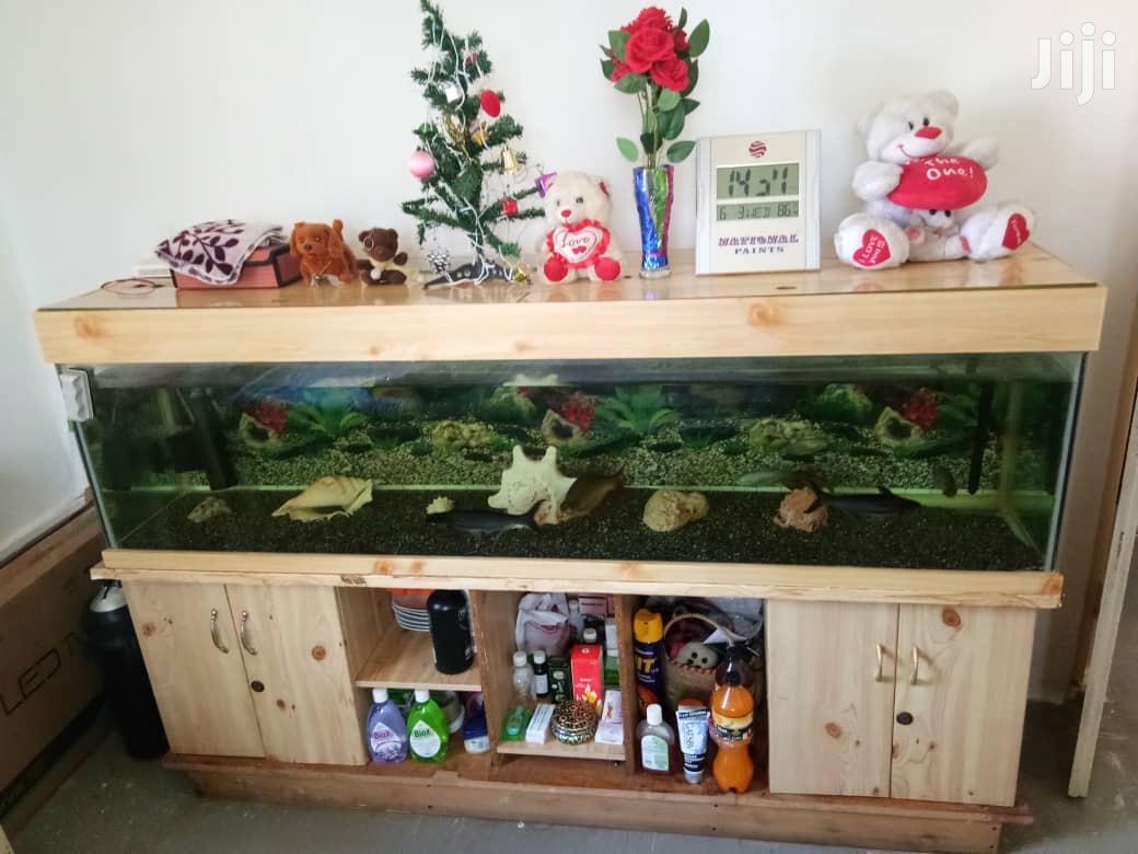 Archive: 6ft Long Aquarium Full Complete Set Including Fishes