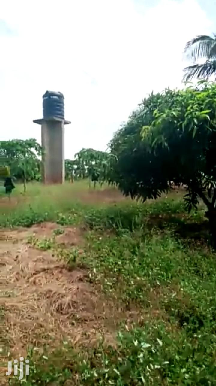 Big Land for Sale | Land & Plots For Sale for sale in Kigamboni, Temeke, Tanzania
